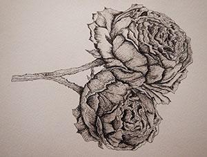 Shae Symonds Floral MHS