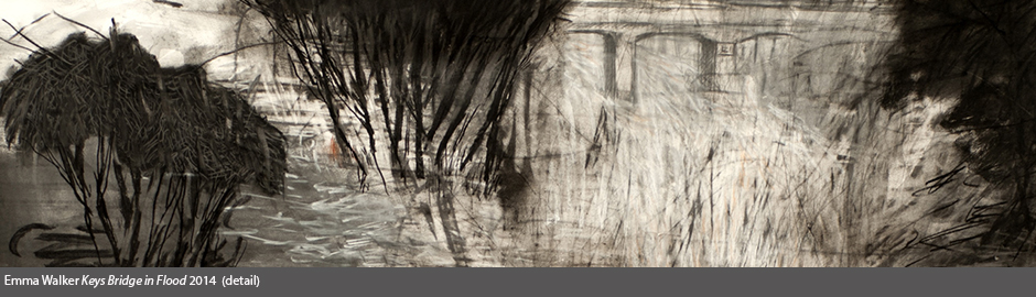 2014 Jacaranda Acquisitive Drawing Award - JADA